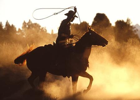 Tejas Rodeo