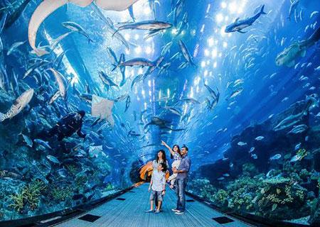 Dubai Aquarium & Water Zoo