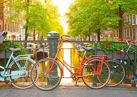 Tour in bicicletta Big City